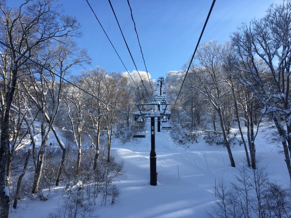 nozawa snow